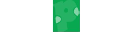 PakSurf Logo